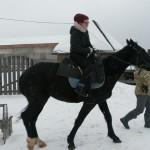 Cерая лошадь (1)