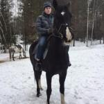 Cерая лошадь (11)