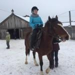 Cерая лошадь (14)