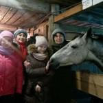 Cерая лошадь (2)