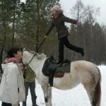 Cерая лошадь (25)