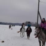 Cерая лошадь (32)