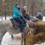 Cерая лошадь (9)